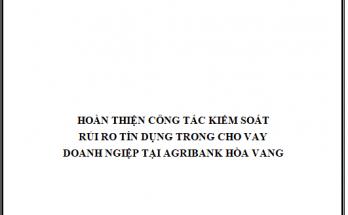 Hoàn thiện công tác kiểm soát rủi ro tín dụng trong cho vay doanh nghiệp tại Agribank Chi nhánh huyện Hòa Vang